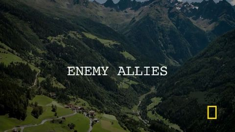 Enemy Allies