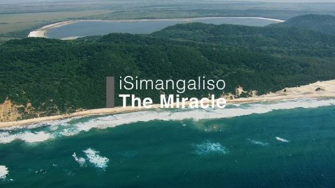 iSamangaliso The Miracle