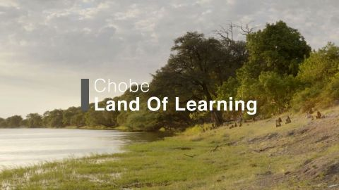 Chobe Land of Learning