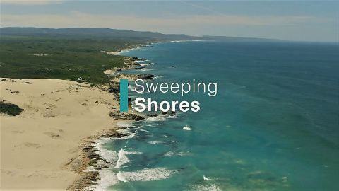 Sweeping Shores