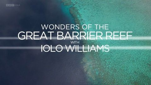 Wonders of the Great Barrier Reef