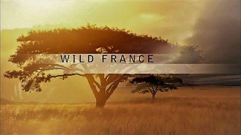Wild France