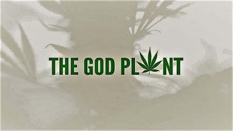 The God Plant