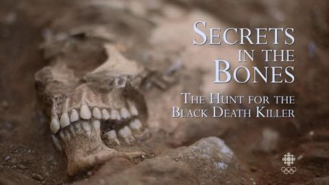 Secrets in the Bones