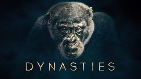 Dynasties Watch Free Online Documentaries Ihavenotv Com