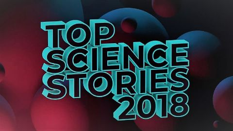 Top Science Stories 2018